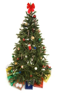 Tips for Storing a Christmas Tree